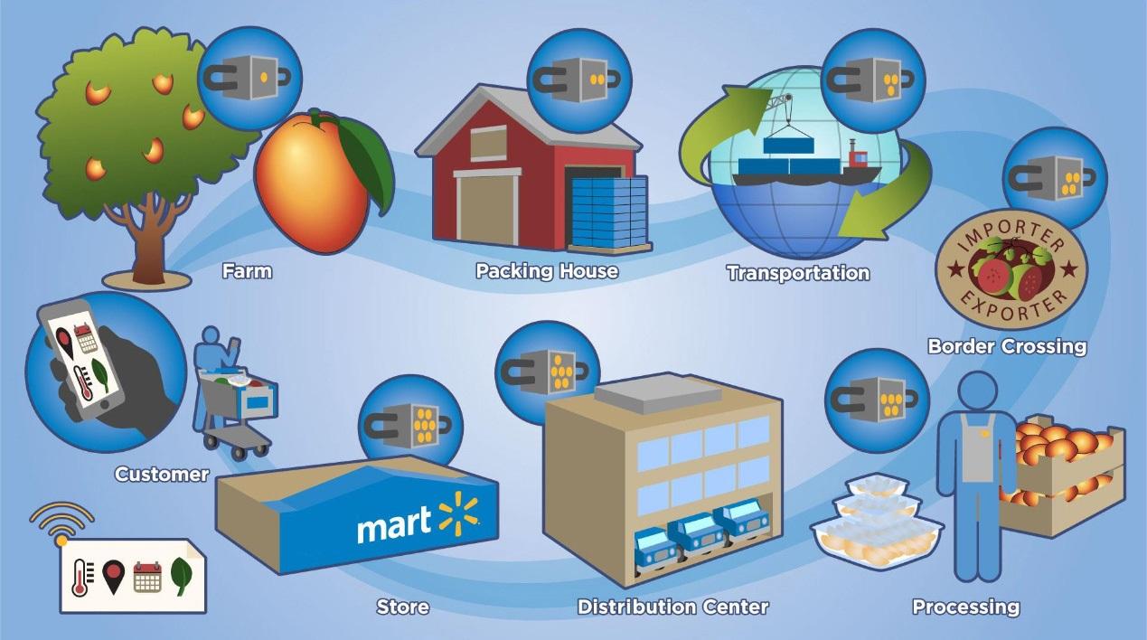 Nông sản Việt cần chuỗi cung ứng tích hợp toàn diện và hiệu quả để vươn ra thị trường thế giới