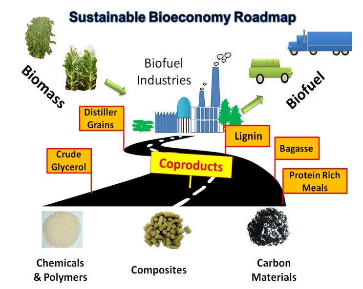 Một mô hình minh hoạ về đường đi của kinh tế sinh học