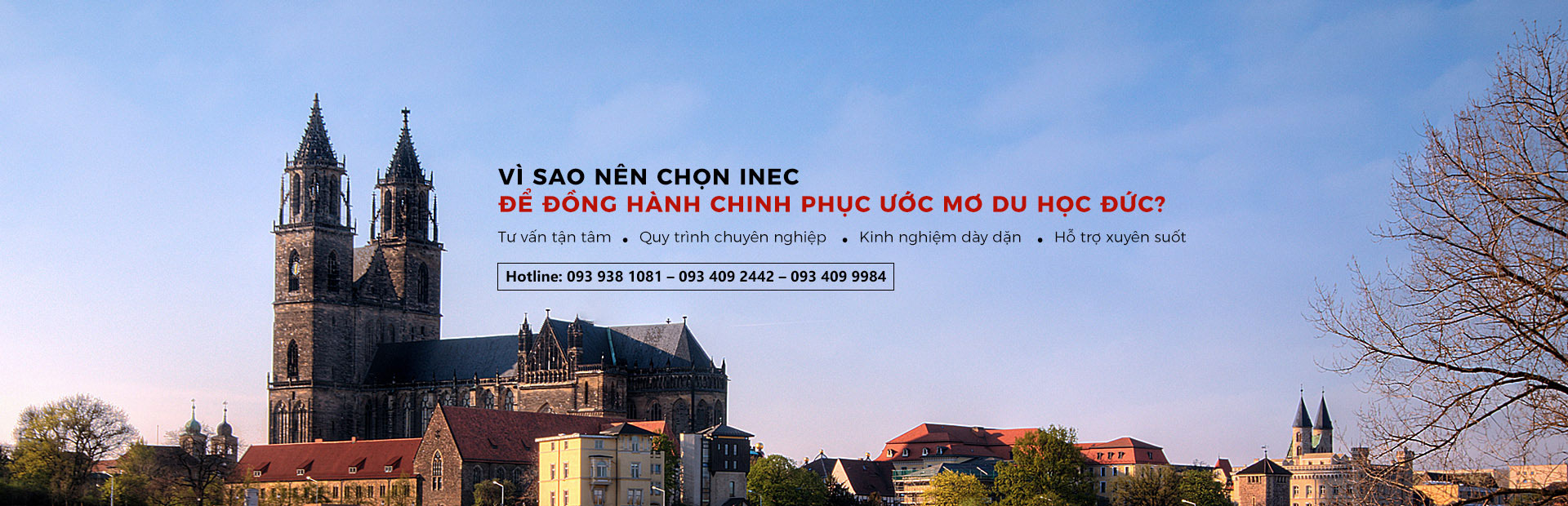 Banner Duc 3