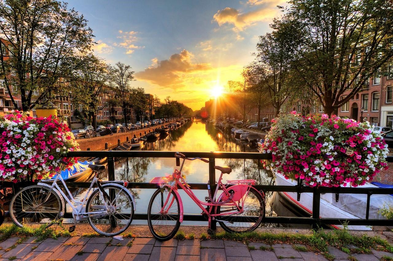 Hội thảo du học châu Âu 2019 - Hà Lan