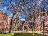 Study Group - Lộ trình an toàn đến các trường đại học hàng đầu nước Anh