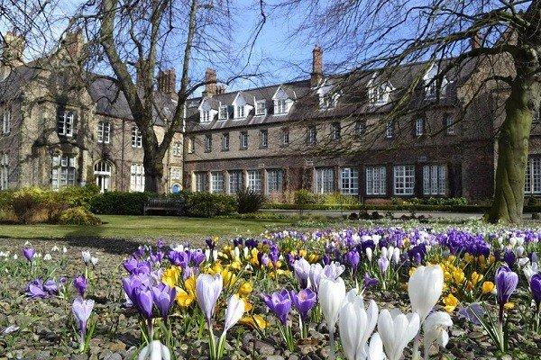 Đại học York St John