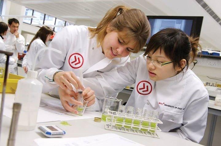 Học sinh tại INTO UEA trong giờ thực nghiệm