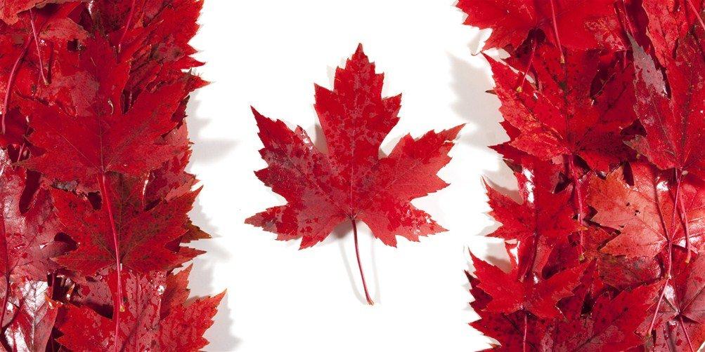 Bảng xếp hạng các đại học của Canada 2015