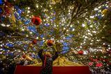 5 thành phố tổ chức giáng sinh hoành tráng nhất Canada