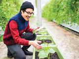 Du học Canada ngành khoa học nông nghiệp và thực phẩm: Hơn 90% SV có việc làm sau tốt nghiệp