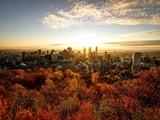 Khám phá Montreal – Thiên đường du học mới của xứ sở lá phong Canada