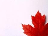 Những ngành học nổi bật tại Canada