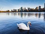 8 điều tuyệt vời sẽ làm bạn yêu British Columbia