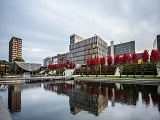 Đại học Erasmus Rotterdam 2019