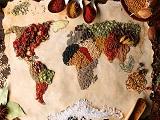 Giải bài toán lương thực bền vững cho tương lai với Đại học KHUD HAS