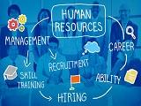 Du học Hà Lan ngành quản lý nhân lực quốc tế tại Đại học KHUD Saxion