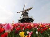 Hội thảo du học Hà Lan - Các ngành xu hướng 2018