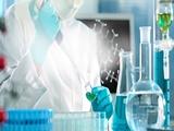 Đại học HAN thuộc top đầu Hà Lan về đào tạo thạc sĩ khoa học đời sống
