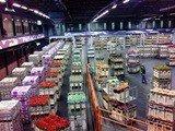 Tại sao nên chọn ngành Logistics khi du học Hà Lan?
