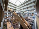 Trường Kinh doanh - Đại học KHUD Rotterdam 2020