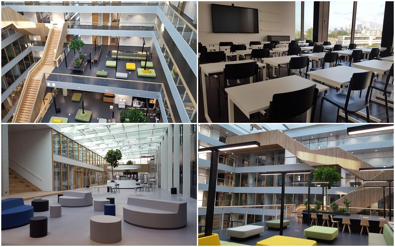 Trường Kinh doanh Rotterdam - Môi trường học tập lý tưởng cho sinh viên quốc tế