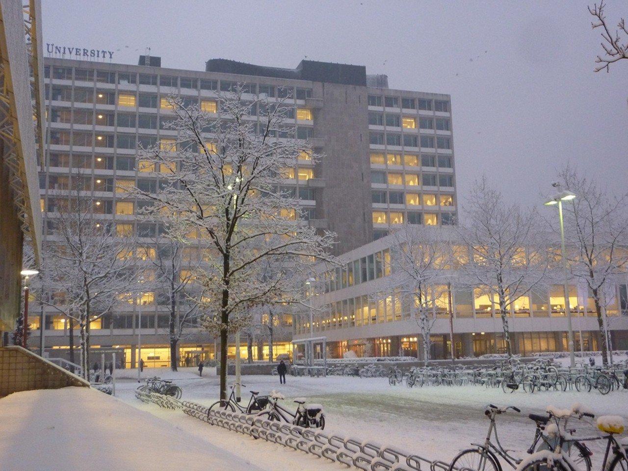 Đại học Nghiên cứu Tilburg