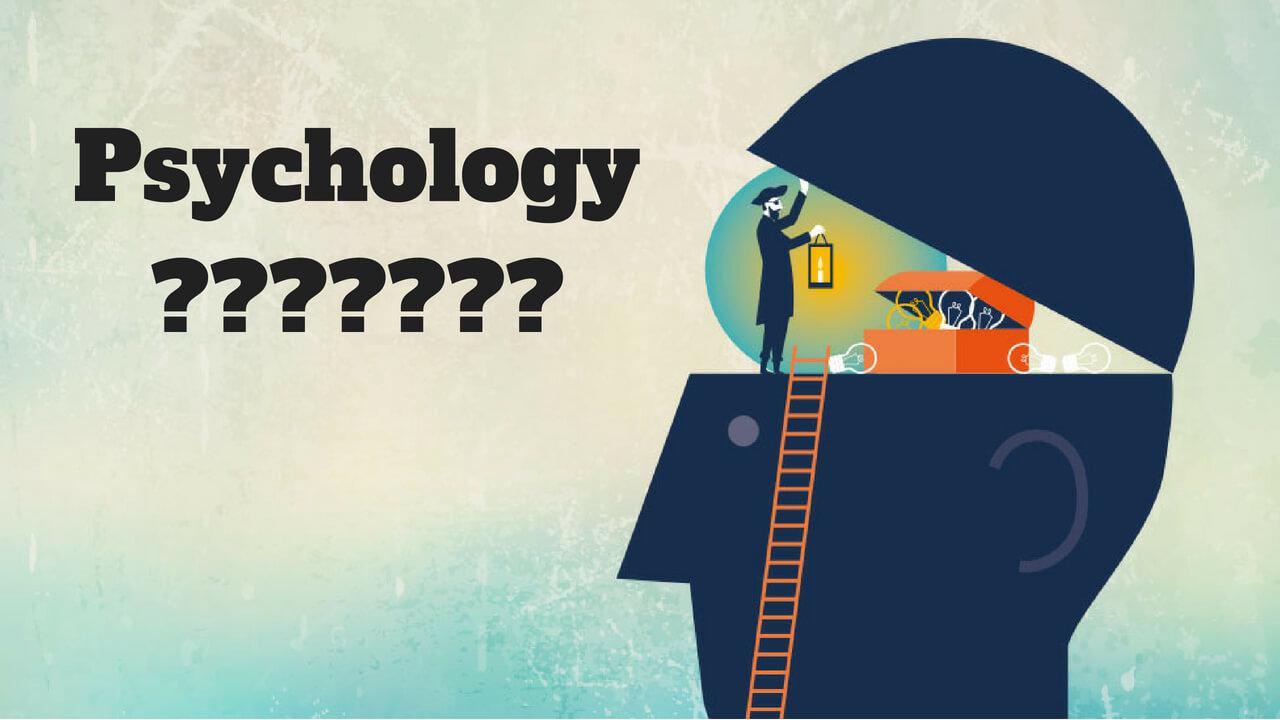 Đại học Tilburg nổi tiếng về đào tạo ngành tâm lý và quản trị