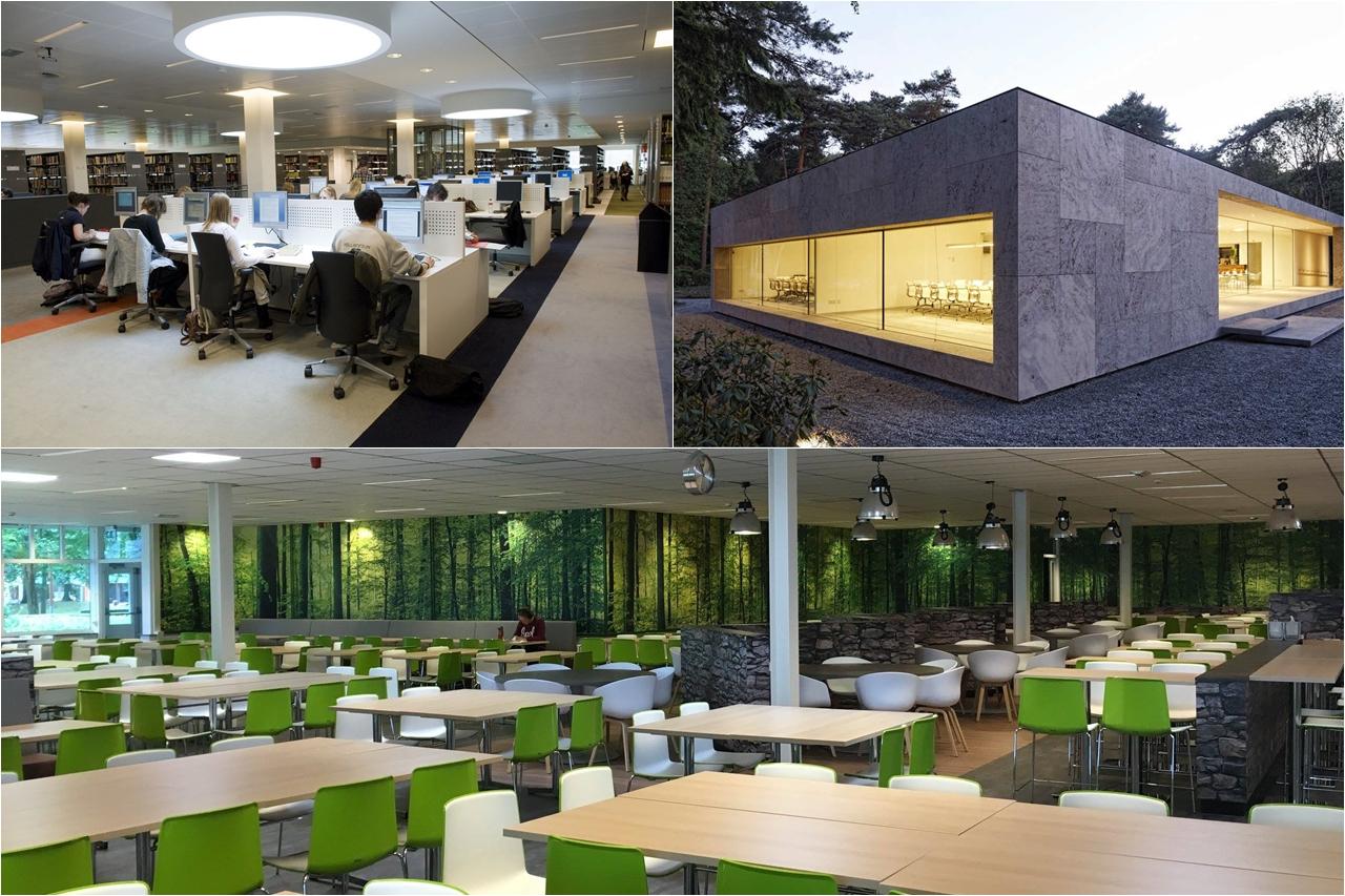 Đại học Tilburg dành không gian học tập tốt nhất cho sinh viên