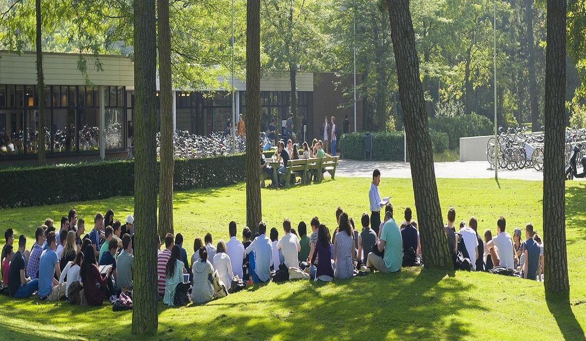 Sinh viên học tập trong khuôn viên xanh mát của Đại học Tilburg