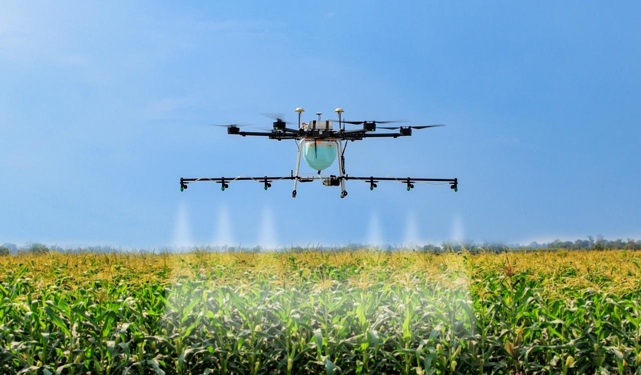 Du học Hà Lan để học hỏi cách làm nông nghiệp công nghệ cao