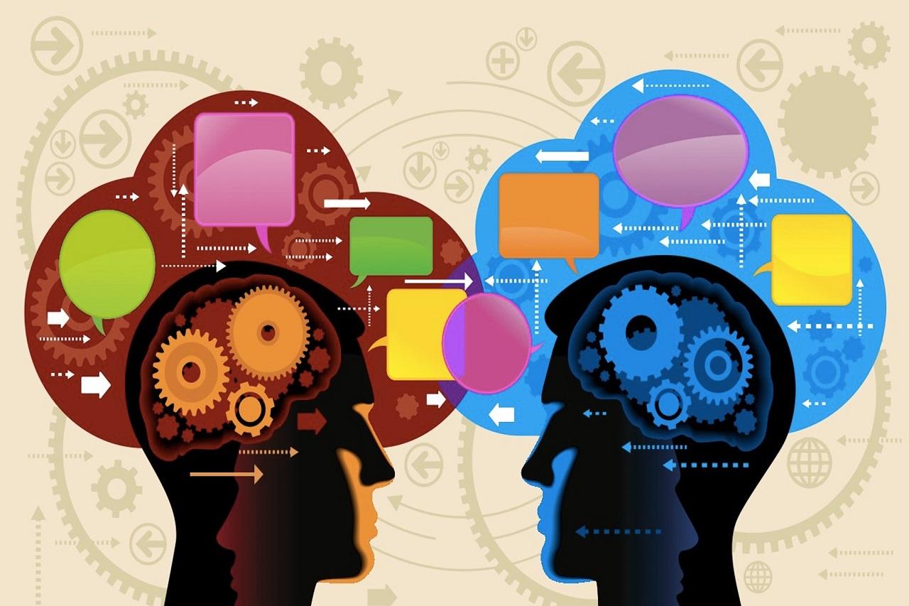 Nghiên cứu về tâm trí và hành vi con người với ngành tâm lý học tại Hà Lan