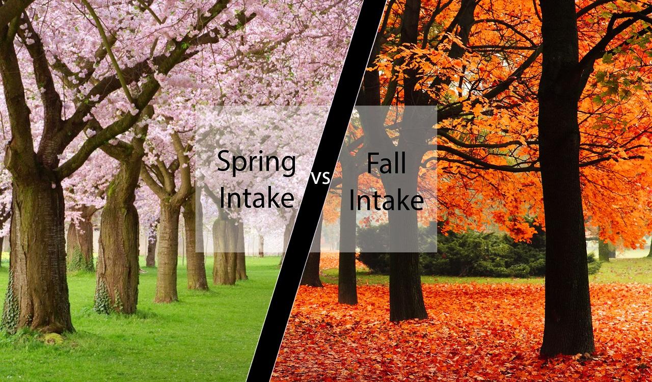Bạn chọn du học Hà Lan kỳ mùa xuân hay mùa thu?
