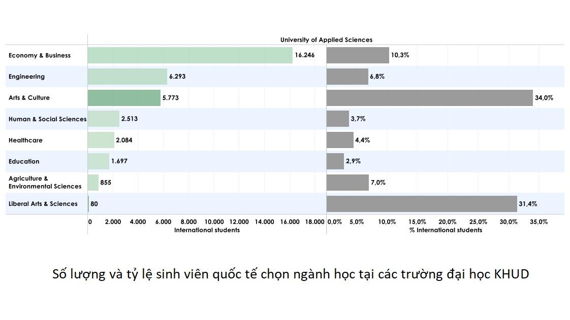 Nhiều sinh viên quốc tế chọn học Kinh tế & Kinh doanh khi du học Hà Lan