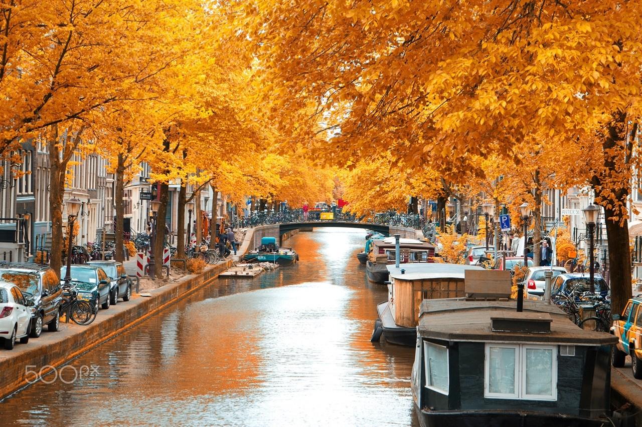 Amsterdam mộng mơ