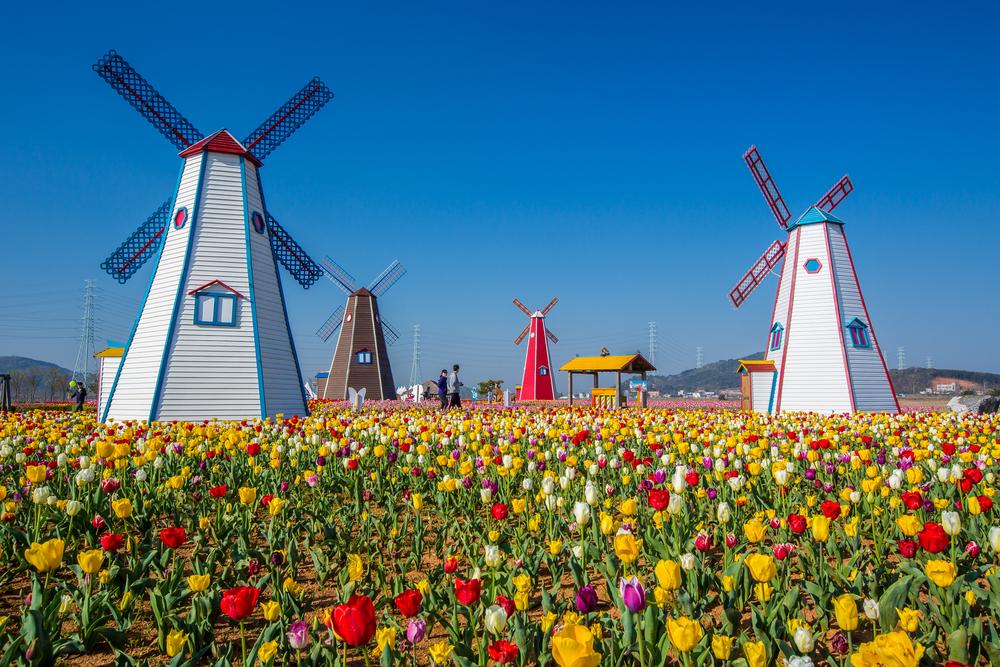 Hà Lan - quốc gia nổi tiếng với nhiều sáng tạo kỹ thuật công nghệ