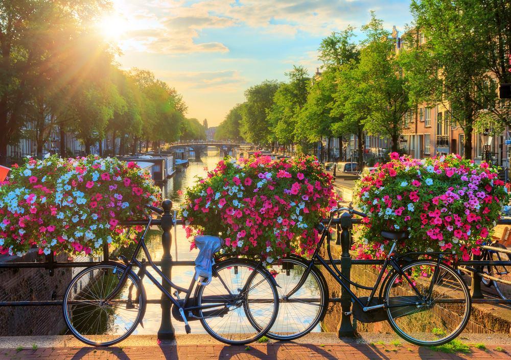 Hà Lan sở hữu nhiều ưu điểm về chất lượng giảng dạy, chi phí học tập và sinh hoạt, môi trường sống, cơ hội việc làm để thu hút sinh viên quốc tế