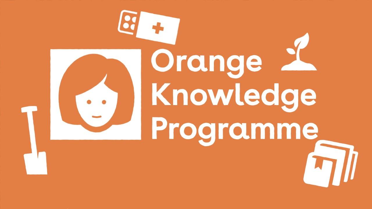 Chương trình Orange Knowledge tạo điều kiện cho các chuyên gia phát triển tri thức