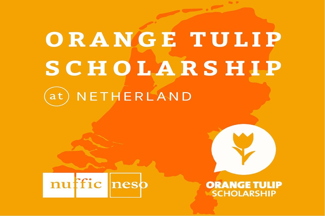 Kết quả hình ảnh cho Orange Tulip Scholarship (OTS)