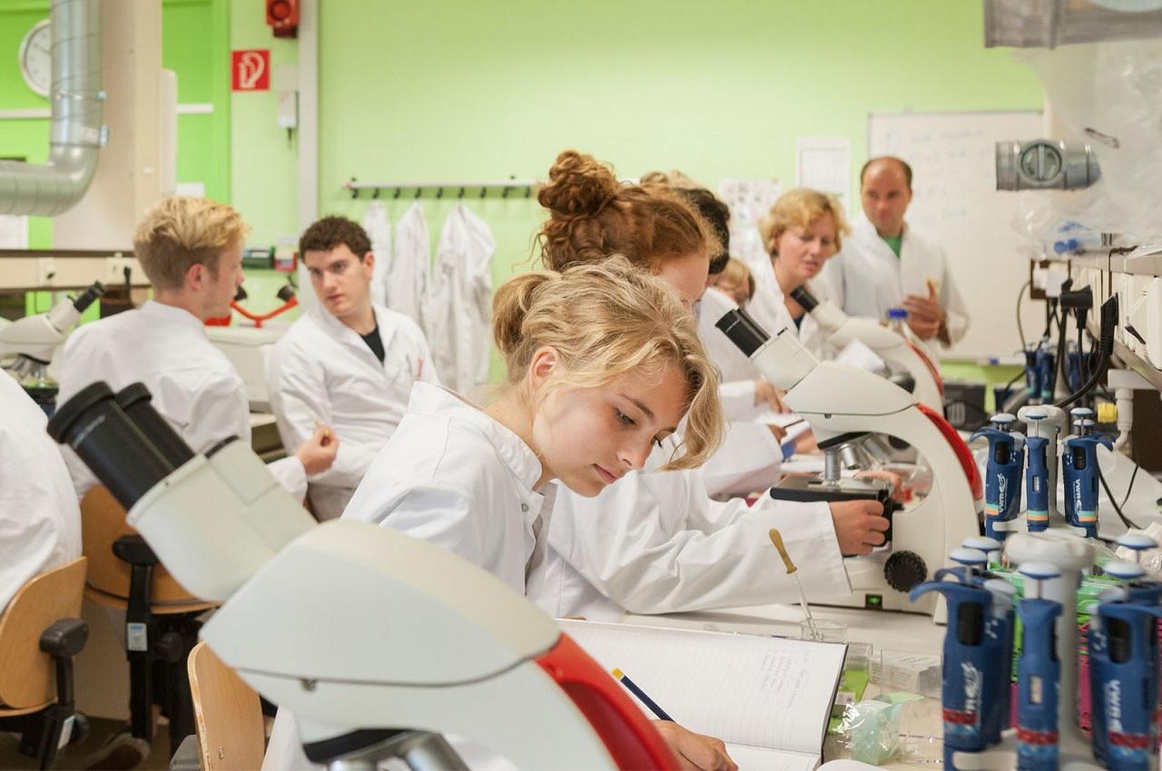 Sinh viên Đại học Maastricht trong phòng nghiên cứu