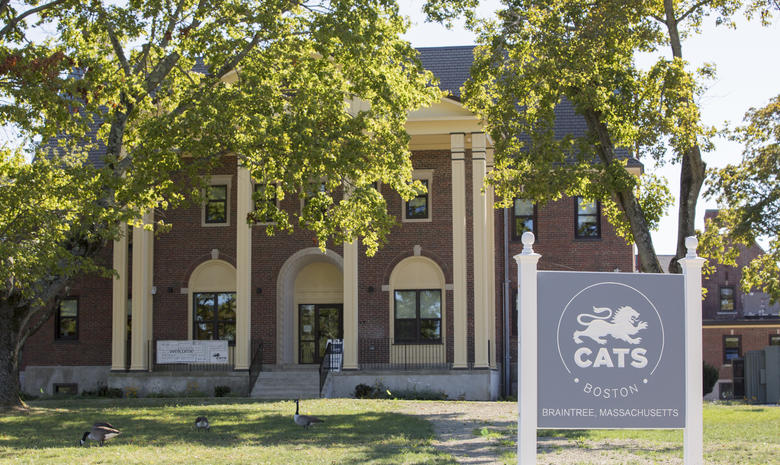 Du học Mỹ tại Cats Academy Boston