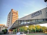 Cùng Đại học Hofstra chinh phục bằng cấp Mỹ với học bổng đến 24.000 USD