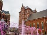 Đại học Duquesne University - Pittsburgh, Pennsylvania 2020