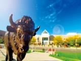 Chuyển tiếp Mỹ vào Đại học Buffalo từ học viện quản lý hàng đầu Singapore