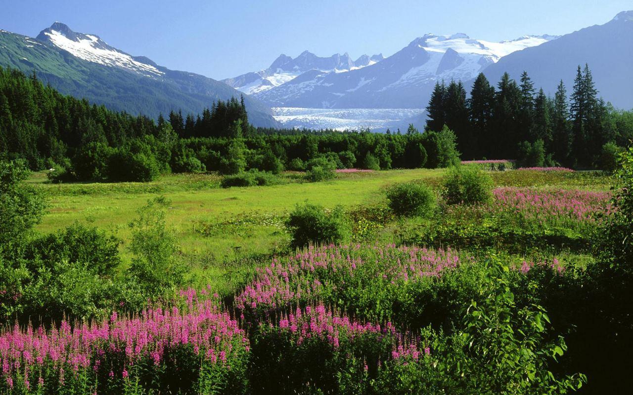 Hình ảnh Mỹ - Bang Alaska