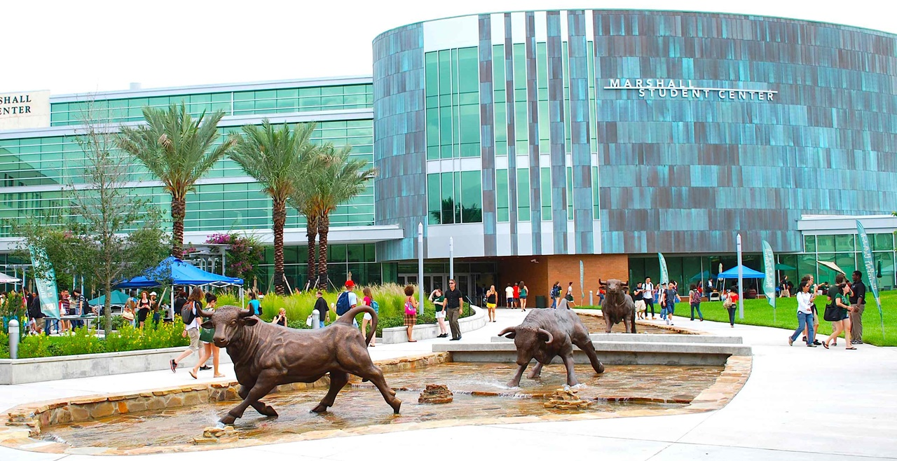 Du học Mỹ Đại học South Florida