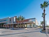 Đại học Texas A&M – Corpus Christi