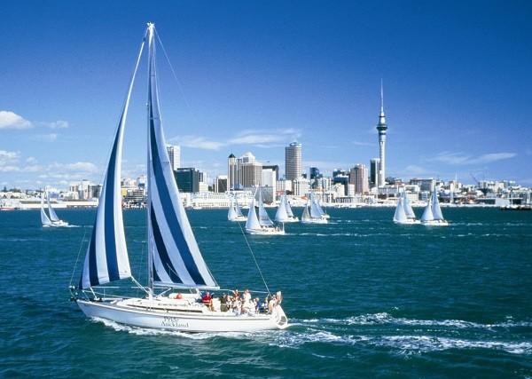 Auckland-Sailing