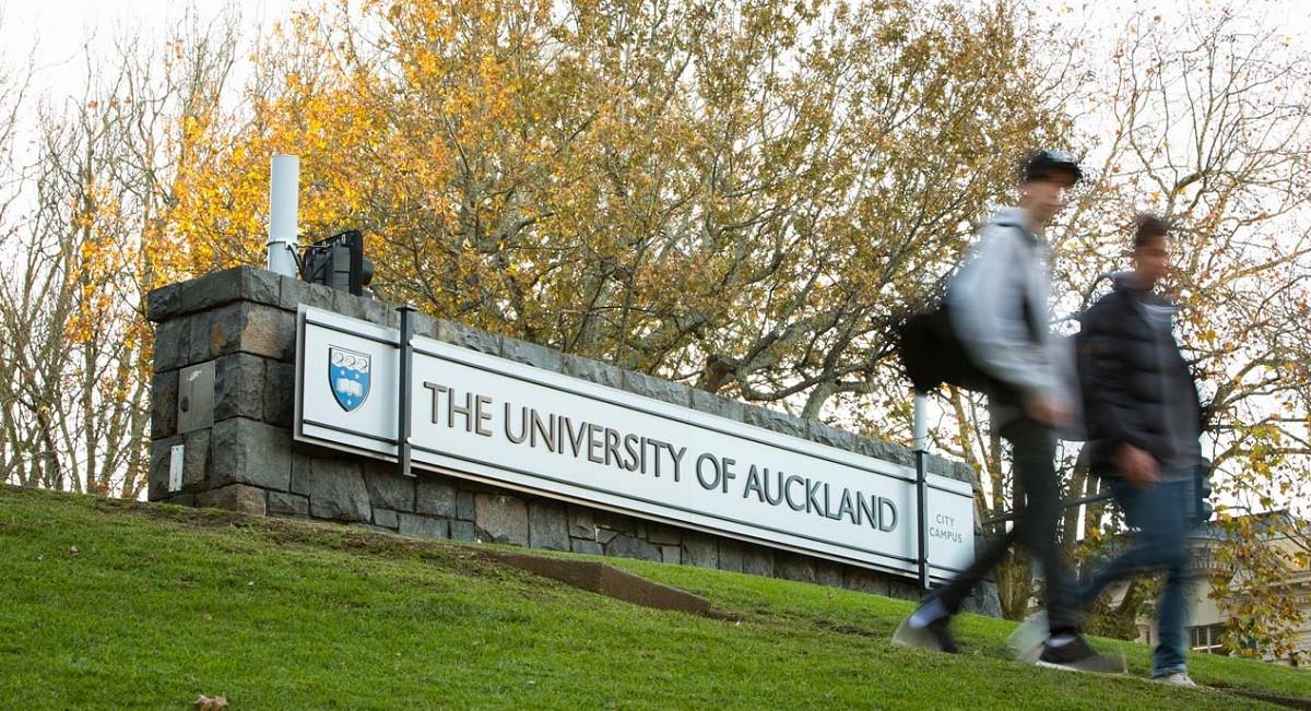 Du học New Zealand tại Đại học Auckland: Top 100 trường tốt nhất thế giới