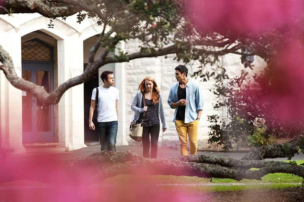 Đại học Auckland, Massey, AUT, Waikato.