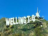 Tư vấn chi phí du học New Zealand tại Wellington