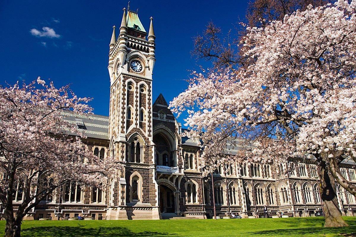 Đại học Otago – Viện đại học lâu đời nhất New Zealand. Ảnh: Flickr.com