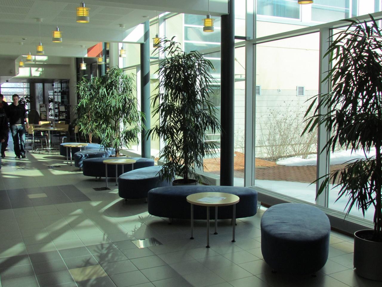 Đại học Turku