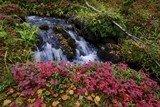 Bốn mùa tại Phần Lan có gì đặc biệt?