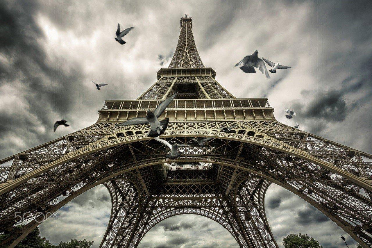 Học viện Le Cordon Bleu Paris 6